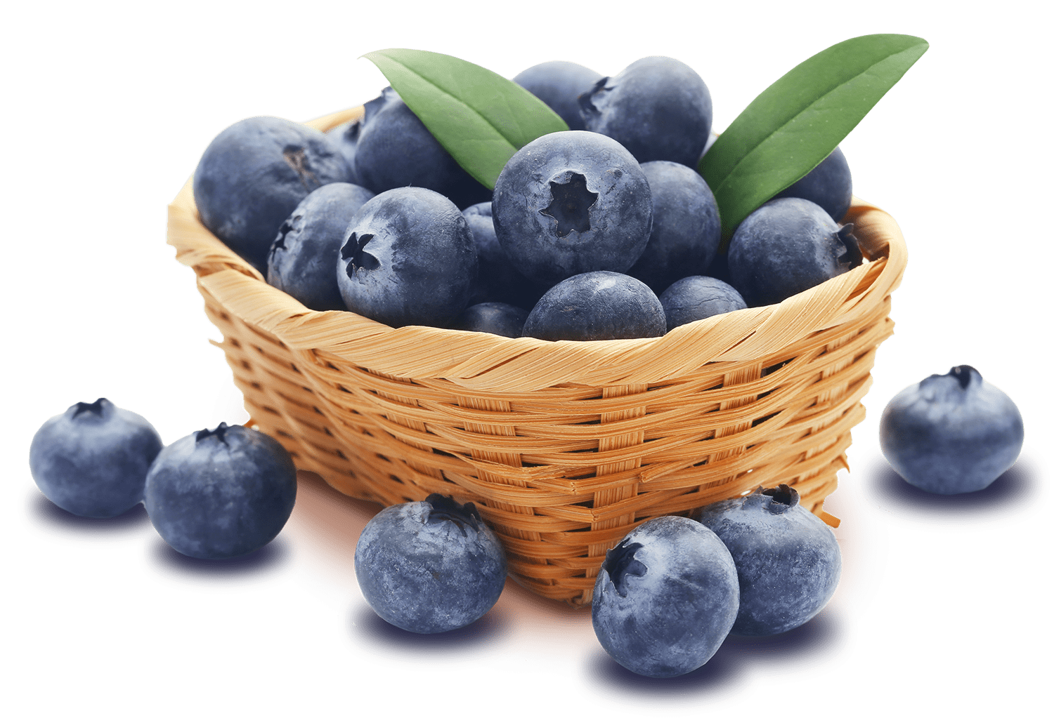 find-local-blueberries